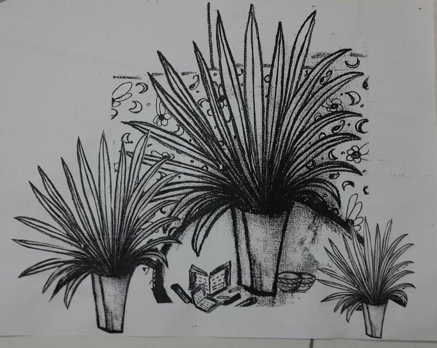 drawing - print